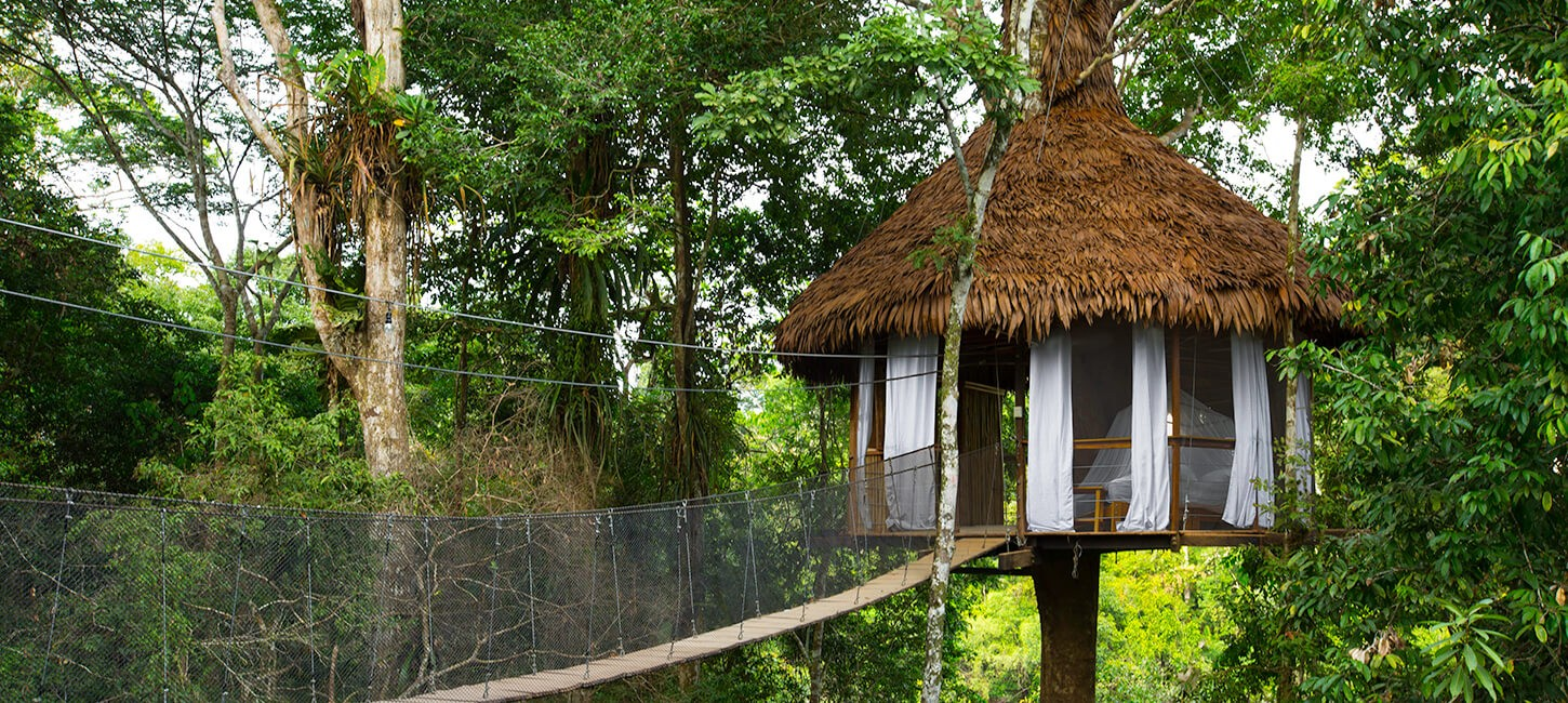 treehouse resort