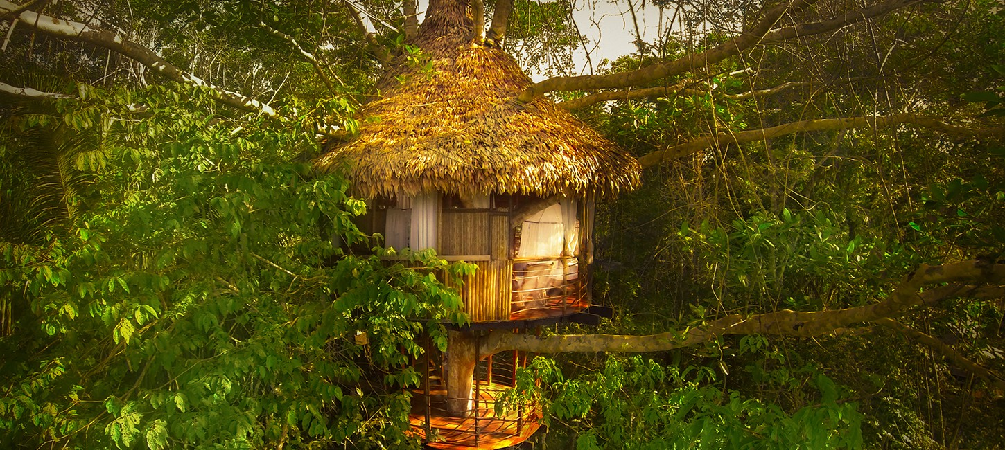 treehouse stay