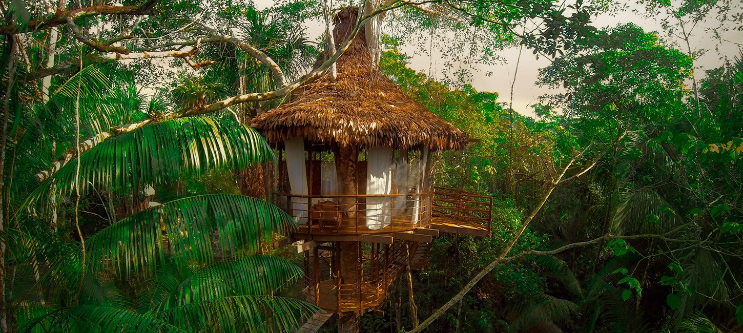 the tree house peru