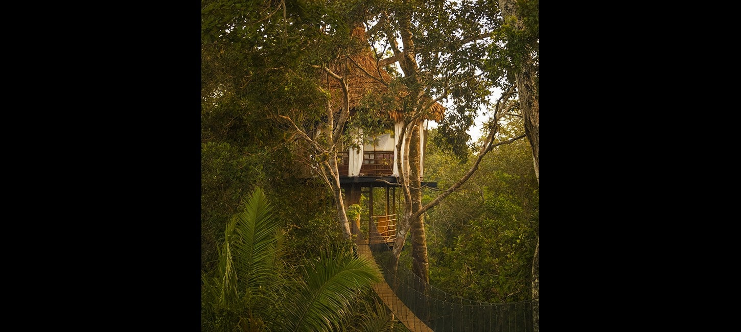 eco friendly treehouse