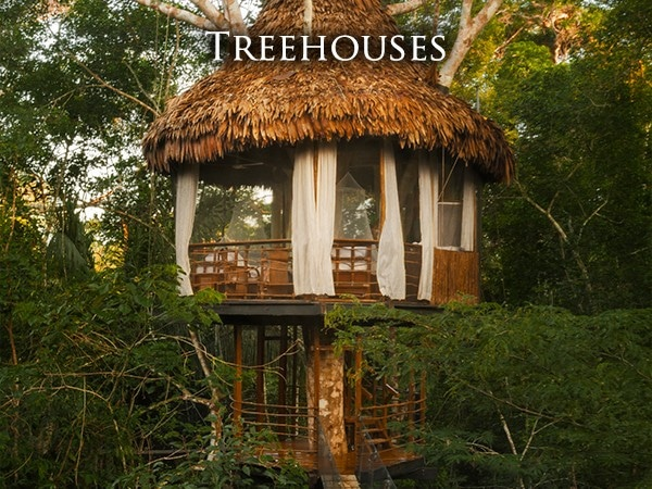 Serene House In Peru : Treehouse lodge peruvian amazon