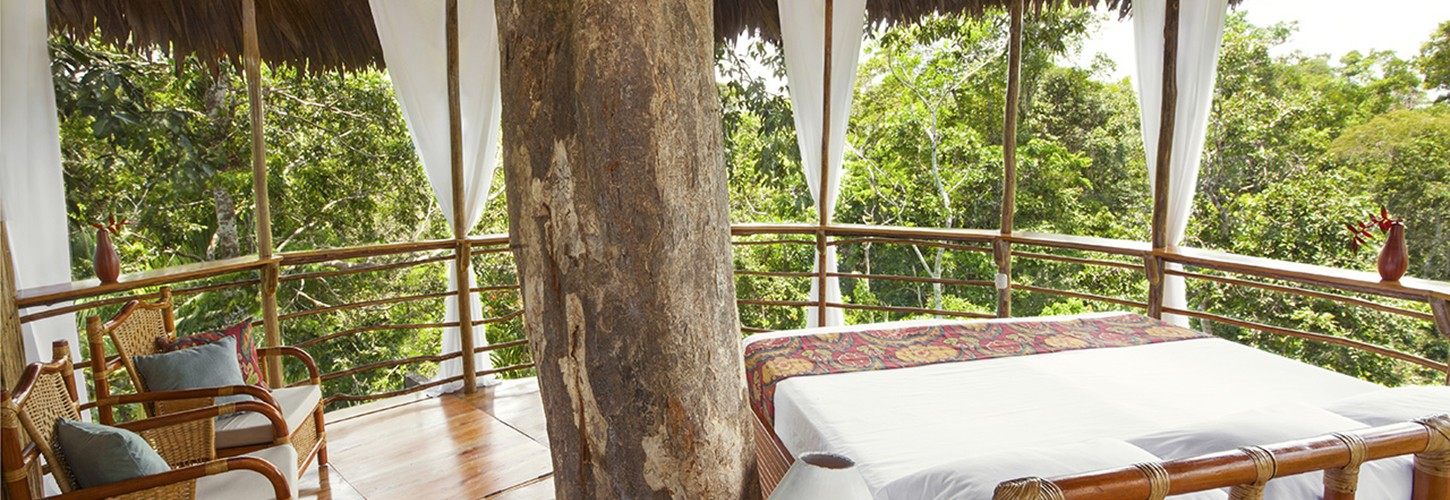 the treehouse resort