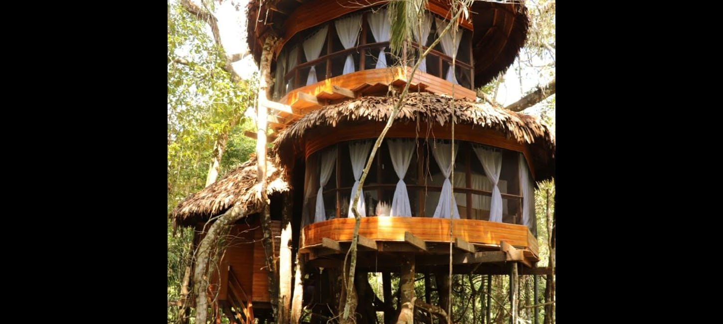treehouse eleven