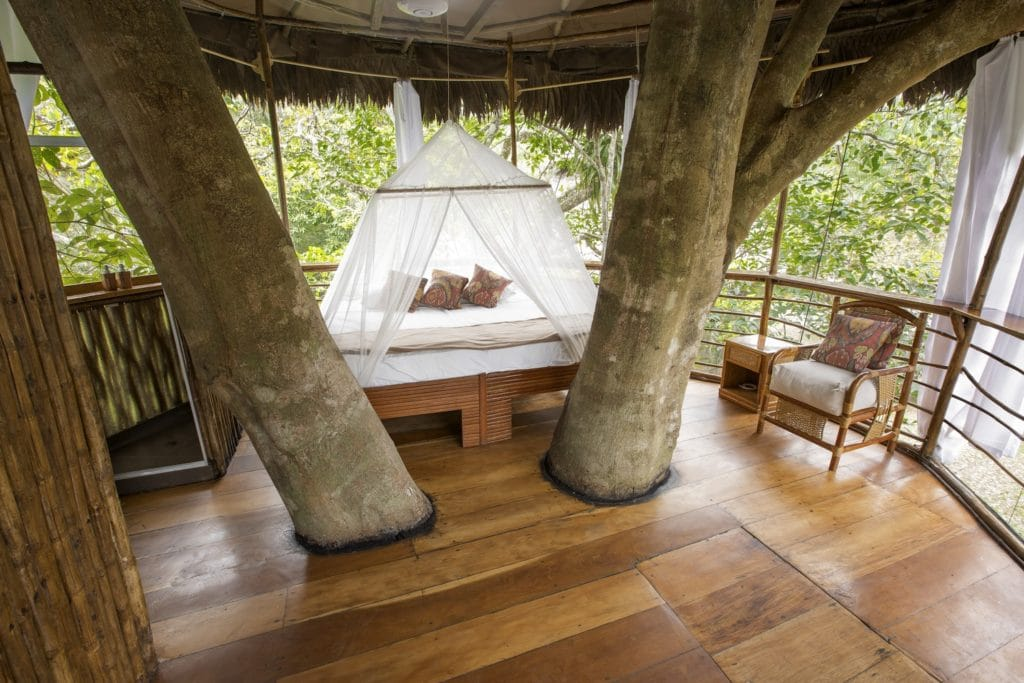 tree house interior