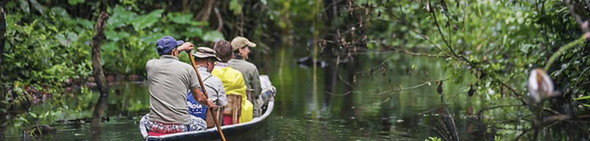 amazon-rainforest-iquitos