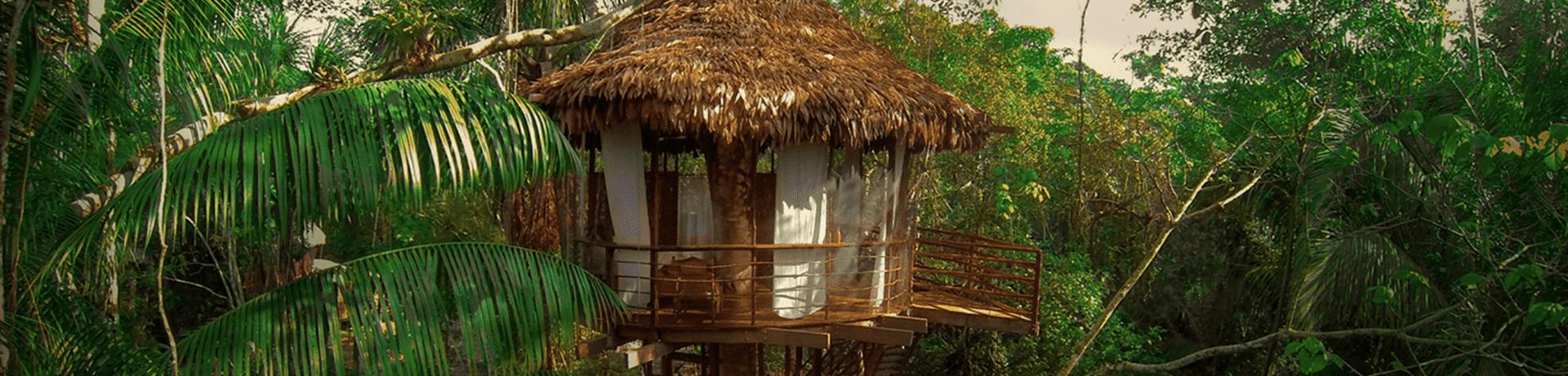 treehouse lodge ecologic