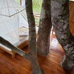 best treehouse in peru