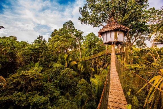 treehouse lodge peru contact us