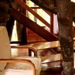 Best treehouse in Iquitos peru