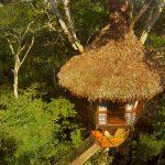 treehouse one peru