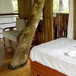 bed in treehouse