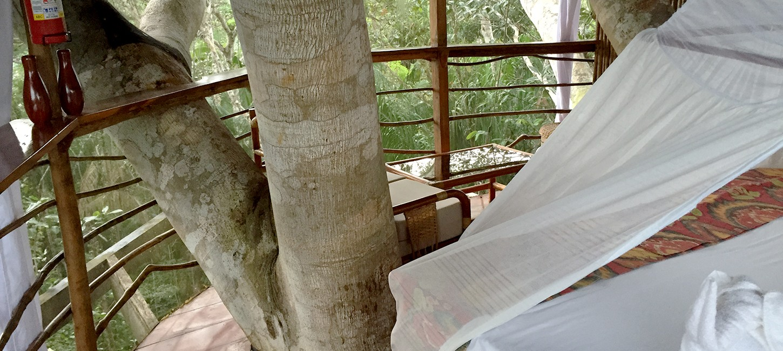 treehouse lodge Iquitos peru