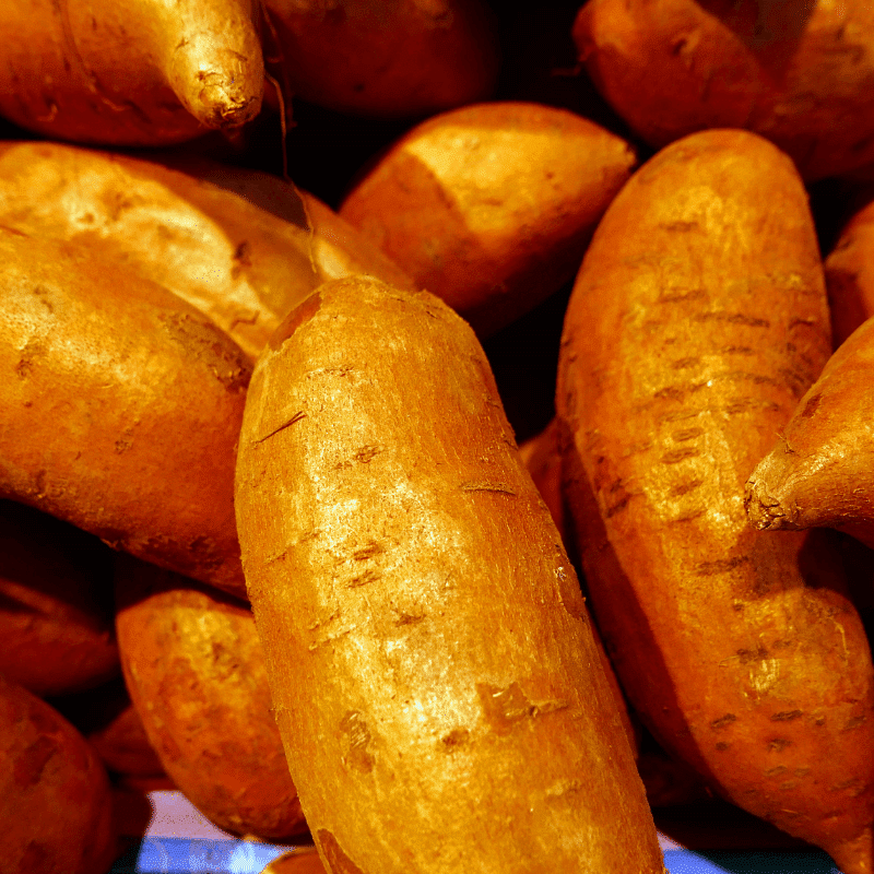 sweet potato cevich