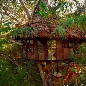 treehouse five in peru