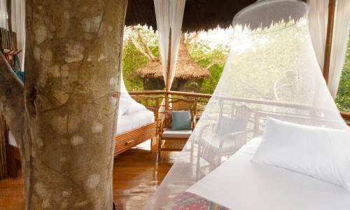 hoteles en la selva del peru