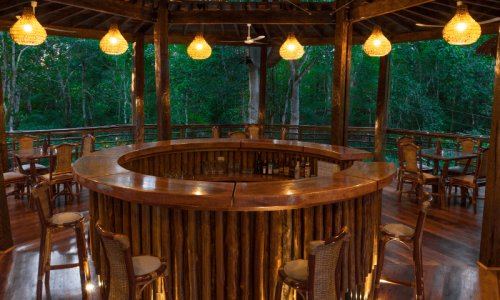 treehouse lodge bar